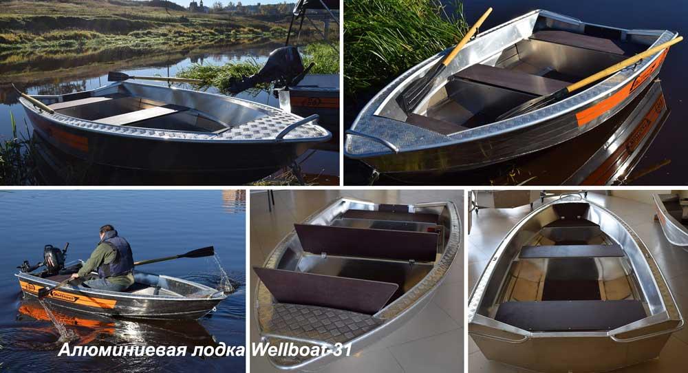 Лодка Wellboat 31